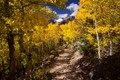 Captured during an autumn hike through Rocky Mountain National Park in Colorado, USA.