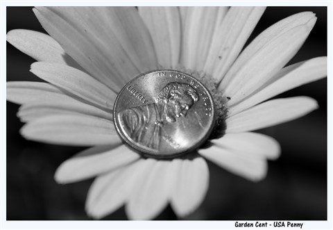 Garden Cent