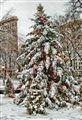 Holiday Season, NY