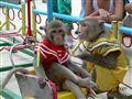 Street circus in Nhatrang, Vietnam